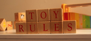 Toy Rules